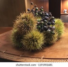Chestnuts in burs