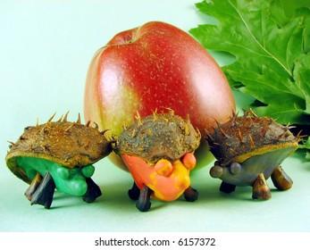 chestnuts hedgehogs