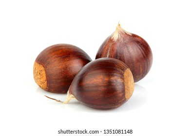 Chestnuts isolated on white background. Hippocastanum.