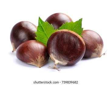 Chestnuts with leafs isolated. Hippocastanum.