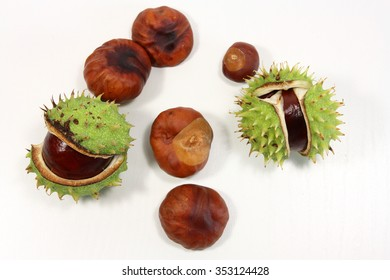 Chestnuts with and without shells, white background