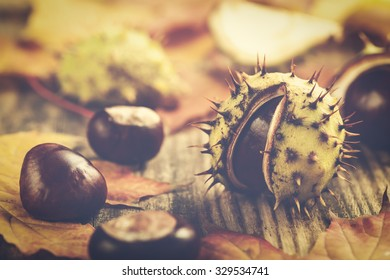 Chestnuts and yellow maple leaves on wooden background, toned photo