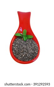 Chia seads isolated. Healthy food supplement with vitamins and minerals.