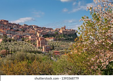 Chianciano Terme, Siena, Tuscany, Italy: landscape at spring of the ancient hill town and the picturesque countryside with flowering tree
