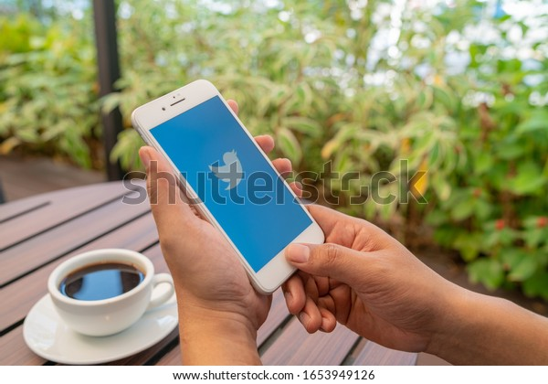 CHIANG MAI, THAILAND - Feb.17,2020: Man holding Apple iPhone 6S Rose Gold with Twitter app.Twitter is an online news and social networking service where users post and interact with messages.