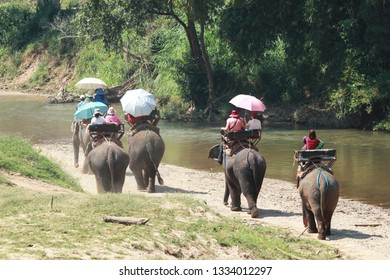 CHIANG MAI / THAILAND - FEB25,2019: Tourist riding on elephants Trekking in Thailand in national park Maetaman Elephant Camp in the north Thailand
