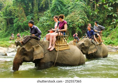 CHIANG MAI, THAILAND - FEBRUARY 9 :  Tourists riding on the elephant across river Maetang on FEBRUARY 9, 2015 in Chiang Mai, Thailand.  Maetang river is one of the most popular rivers for rafting.