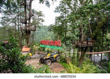 CHIANG MAI, THAILAND - June 12, 2017: The Pongyang Jungle coaster & zipline  is for travel and play a coaster in the middle of forest.Roller coaster tracks in forest at Chiang mai Province, Thailand.