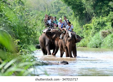 Chiang Mai, Thailand, JUNE 3, 2015:Group tourists to ride on an elephant in forest at Chiang mai, thailand