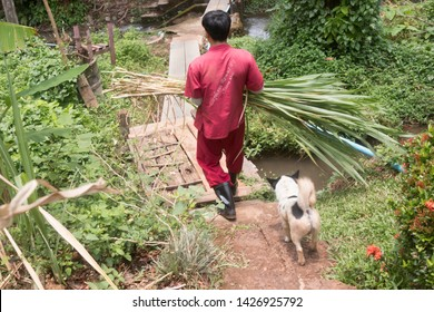 CHIANG MAI / THAILAND - May 12, 2019: A caretaker at an ethical elephant sanctuary prepares food for the elephants in northern Thailand.