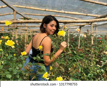Chiang Mai, Thailand - Nov 30,2018 : Unidentified woman enjoy beautiful rose garden at Queen Sirikit Botanic gardan in Chiang Mai, Thailand on November 30,2018.
