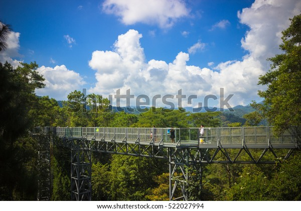 Chiang Mai Thailand Nov 6 2016 Stock Photo (Edit Now) 522027994