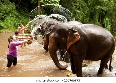 CHIANG MAI, THAILAND -SEP 11:Travelers are splashing water on elephants. September 11, 2013 at Patara Elephant Farm, Chiang Mai, Thailand