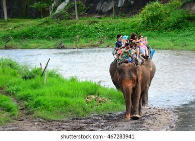 CHIANG MAI,THAILAND - November 13, 2015:Elephants and mahouts, while escorting tourists to ride elephants along the river in  Mae Wang, Chiang Mai.