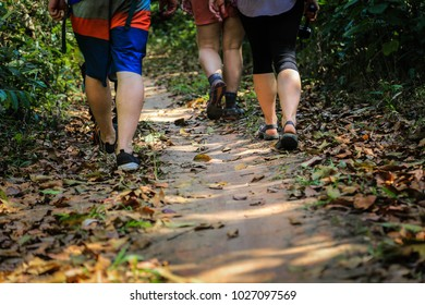 Chiang mai,Thailand-Feb 8,2018:Group of people trekking in forest at Doi inthanon national park