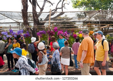 CHIANG MAI,THAILAND-FEB.3 : 37th Anniversary Chiang Mai Flower Festival, People are interested in coming to visit the annual Chiang Mai flower festival. on Feb.3, 2013 in Chiang Mai,Thailand.