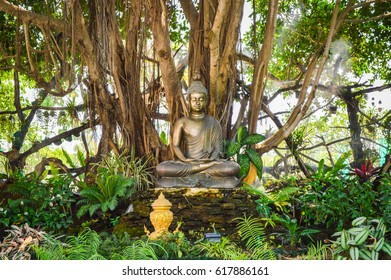 Chiang Rai, Thailand - April 4, 2017 : Wat Rong Khun or White Temple, designed and constructed by Chalermchai Kositpipat. Buddha image under the tree.