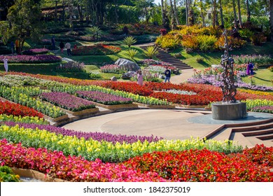 Chiang Rai, Thailand- December 11, 2019 : Tourist at Mae Fah Luang Garden or Doi Tung Royal Villa, Chiang Rai, Thailand on December 11, 2019.
