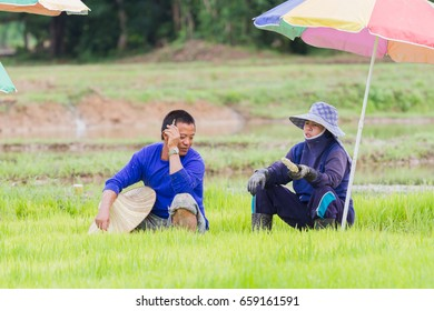 CHIANG RAI, THAILAND - JUNE 16 : Unidentified husband and wife farmer talking in the field on June 16, 2017 in Chiang rai, Thailand.
