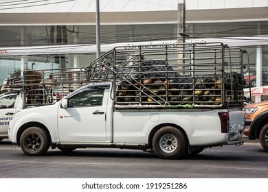 Chiangmai, Thailand - January 29 2021: Private Isuzu Dmax Pickup Truck. On road no.1001 8 km from Chiangmai city.