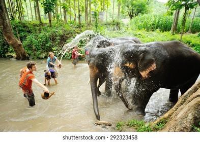 Chiangmai ,Thailand - July 23 : mahouts ride a elephants and prepare to take a bath elephants in river on July 23, 2011 at Sameong elephant camp ,Chiangmai ,Thailand