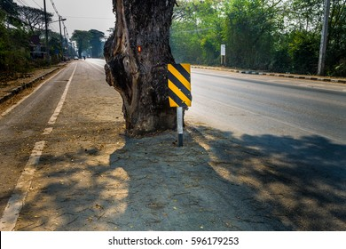 ChiangMai, Thailand. March, 06-2017: Traffic warning sign was located on the front of the tree in the case of safe driving.