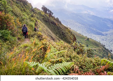 CHIANGMAI , THAILAND , NOV 1 : Inthanon mountain is the highest of Thailand on Nov 1 2015. This place is the beautiful landscape and tourist attraction point of Chiangmai Thailand.