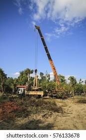 CHIANGMAI,THAILAND,JAN 26, 2017: Cranes were lifting big tree in the garden at chiangmai,thailand