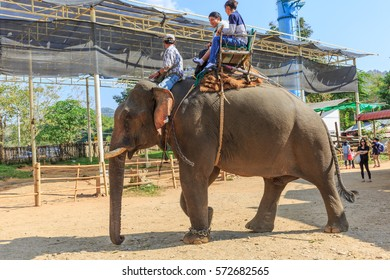 CHIANGRAI - FEB,6 : Tourists riding on the Elephant with howdah at elephants camp Ruammit Karen village Where held for tourist trekking in jungle trail .THAILAND FEB,6 2017