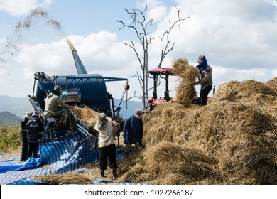 CHIANGRAI , THAILAND - DEC 5, 2017: Worker use a rice harvesting machine loading rice grains into a bag