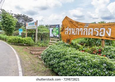 ChiangRai THAILAND-Thailand: military 10:3: 2017, helping Vegetable gardens in ChiangRai Thailand.