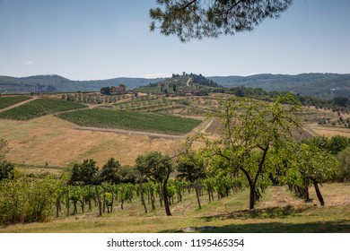 Chianti Italy July 1st 2015 : View from a winery terrace looking across the vineyards in the Chianti region of Tuscany, Italy