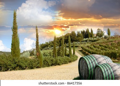 Chianti vineyard landscape with wooden barrels in Tuscany, Italy