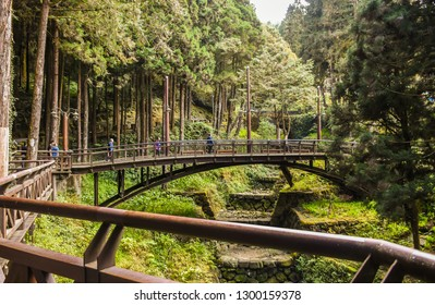 Chiayi , Taiwan - January 6, 2019 - Many Tourist In Alishan National Scenic Area, Taiwan. The Alishan National Scenic Area Is Mountain Resort And Nature Reserve. Image For Templates, Placards,Banners.