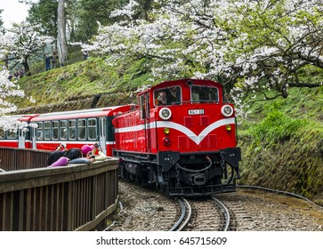 Chiayi, Taiwan - March 16, 2012: Alishan Forest Railway and in Chiayi, Taiwan.