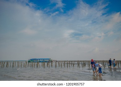 Chiayi , Taiwan - Sep 22, 2018: Ocean exploration - boat to Dongshih Waisanding Sand Bar, Raising oysters, oyster farming , catching fish, nice food at boat. Chiayi County, Taiwan