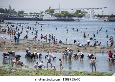 Chiba, Japan, 05/05/2019 , People enjoying the last few days of golden week on the Chiba Tower park bay.