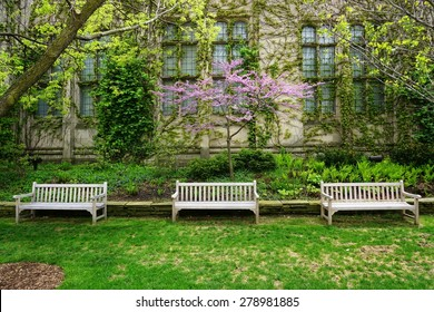 CHICAGO, IL -14 MAY 2015- The Gothic campus of the University of Chicago, which counts close to 15,000 undergraduate and graduate students, is located in the Hyde Park neighborhood.