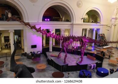 Chicago, IL June 25, 2018 Field Museum Stanley Hall Titanosaurus Dinosaur Skelton Model on display