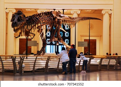 Chicago, IL, USA April 7, 2008 A family views Sue, the most complete T Rex ever discovered, on display at the Field Museum in Chicago, Illinois