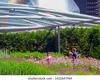 Chicago, IL, USA - June 28 2009: Monroe Garden, in Millenium Park, with the Frank Gehry designed Jay Pritzker Pavilion behind. Concerts at the pavilion are mostly free.