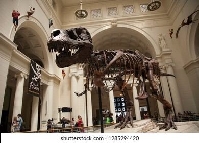 Chicago, Illinois, USA – August 03, 2009: Horizontal view of the skeleton of Sue (Tyranosaurus Rex) at the Field Museum of Natural History lobby with some visitors and hanging decoration around