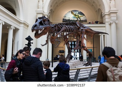 Chicago, Illinois/USA-10/22/2016: Tourist at the Field Museum in Chicago, Illinois.