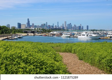 CHICAGO - JUNE 2018: Chicago skyline and 31st Street Harbor seen from the Burnham Wildlife Corridor hiking trail in June 2018 in Chicago.
