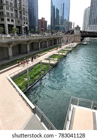 Chicago Riverwalk bioremediation