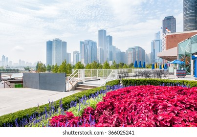 Chicago skyline view from the terrace Navy Pier, with red flowers in the foreground