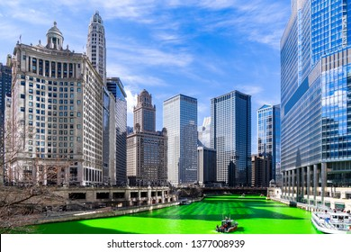 Chicago Skylines building along green dyeing river of Chicago River on St. Patrick's day festival in Chicago Downtown IL USA