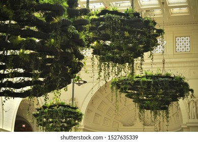 Chicago, USA; June 27, 2019:  Plants growing on 3D printed hydroponic systems made of bioplastic material, suspended above the main hall of the Field Museum