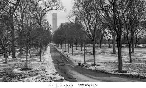 Chicago, USA - March 5, 2019: Winter view of snowed Grant Park in Chicago, Illinois.
