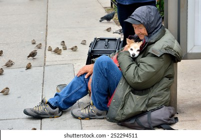 CHICAGO, USA - OCTOBER 5: A homeless old man and his dog, in downtown of Chicago, Illinois, in October 5th, 2014.Chicago is the biggest city in North of USA.